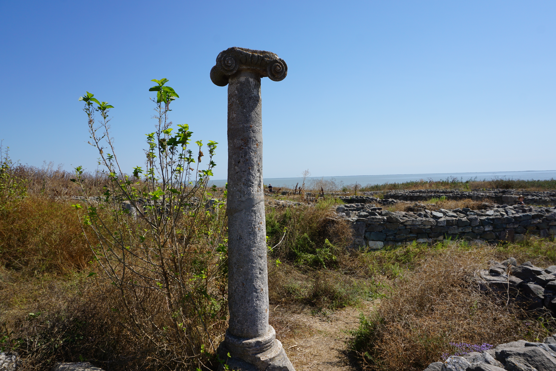 Cetatea Histria - simbol.JPG